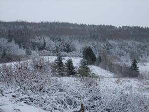 Saint laurent , neige