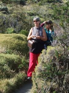 vers le mirador de cuernos Patagonie