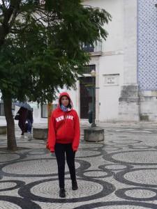 casçada Aveiro, Carnet de voyage