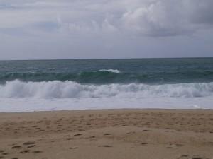Spot nazaré surf